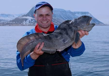 Pescador Islandês
