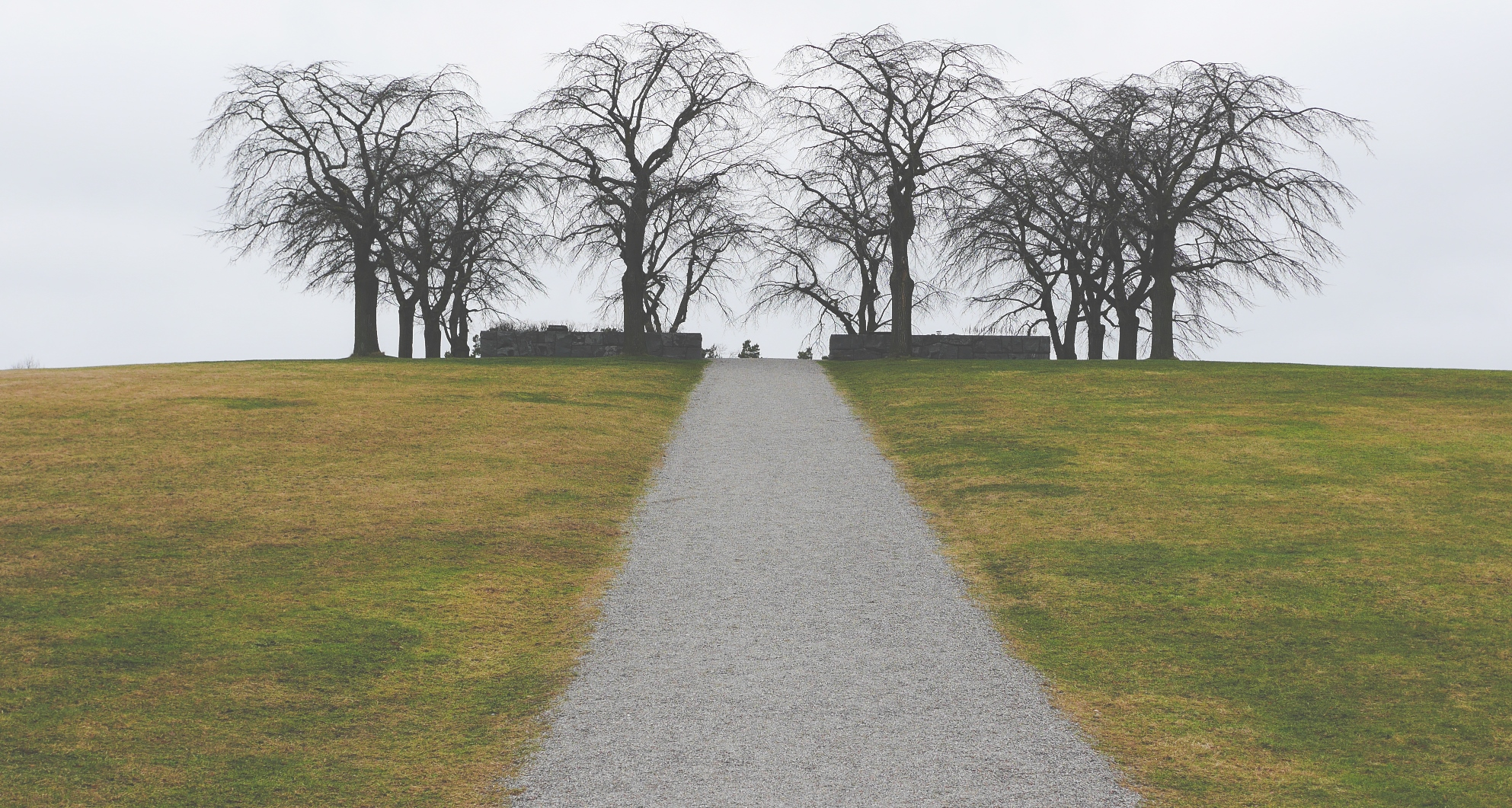 Uma colina com gramado