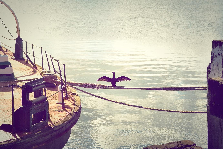 Foque no egoísmo, não na gratidão